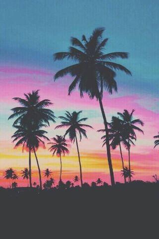 Beach Günbatımı