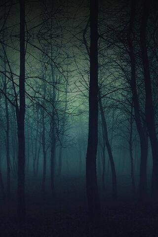 वन डार्क