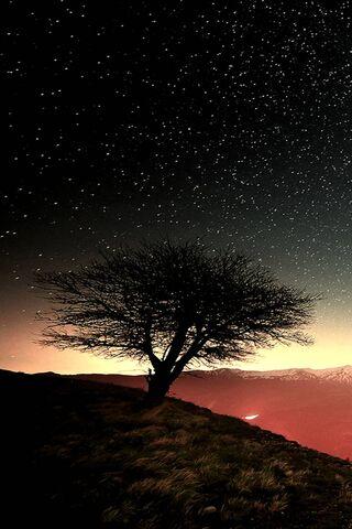 तारों से भरा आसमान