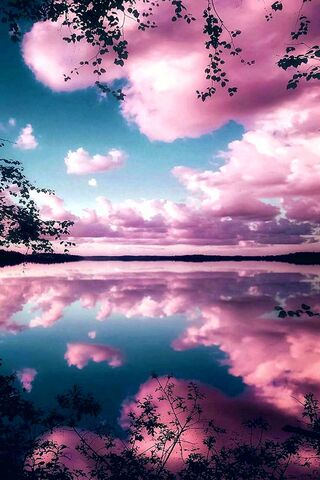 反映粉红色的天空
