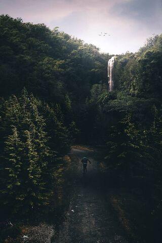 หลงทางในธรรมชาติ
