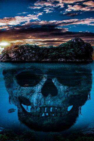 Crâne terrestre