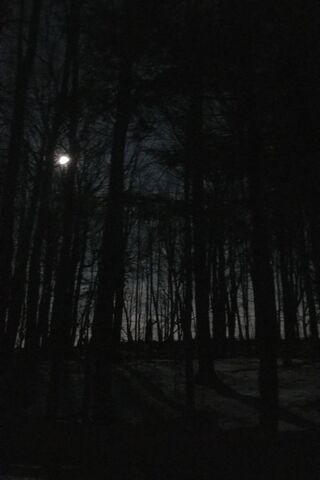 PHONEKY - Öne Çıkan Doğa Ve Manzara HD Duvar Kağıtları
