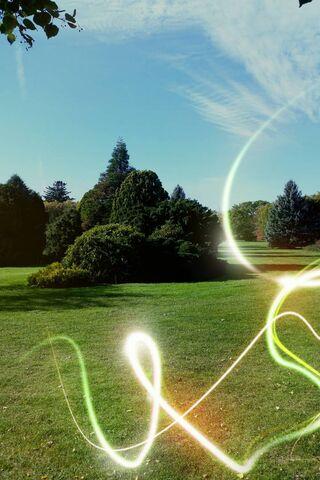 Niagara Parks Tree