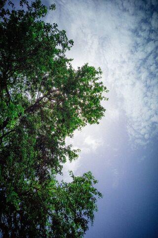 Natura Z Naturą