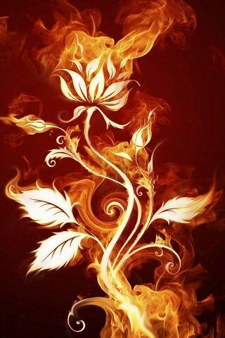 फूल पर आग
