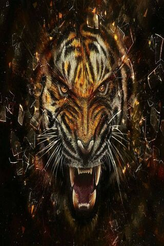 Angry Tiger Hd