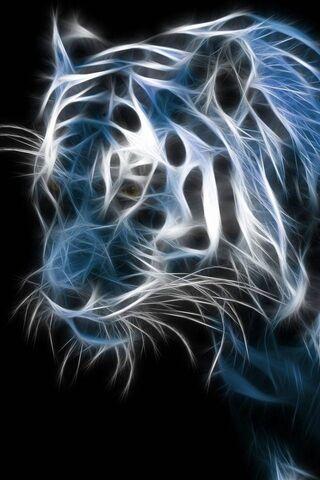 النمر الابيض