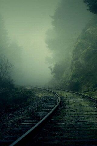 जंगल में रेल