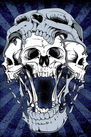 Skulls Faces