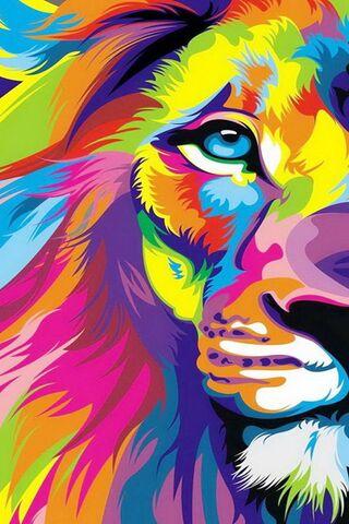 Colour King