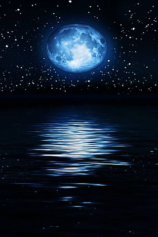 Moonshine Night