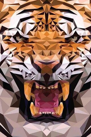त्रिकोण वाघ