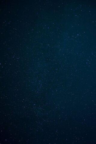 Dark Galaxy Stars