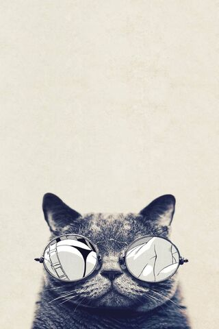 Cat Hipster