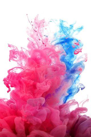 Màu sắc