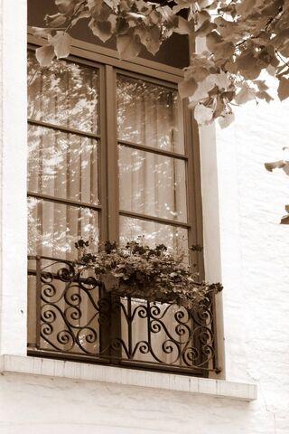 खिड़की