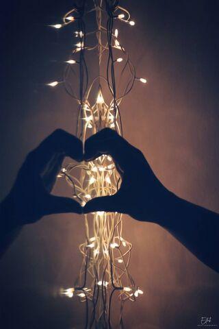 Vẻ đẹp trái tim