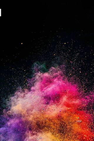Holi Colour