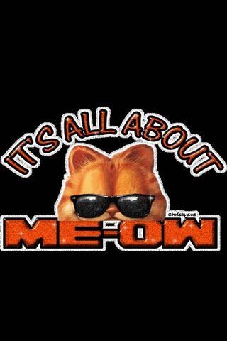 Garfield Say Meow