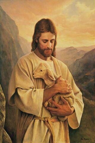Chúa Giêsu mất con chiên