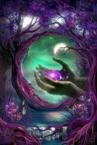 마법에 걸린 숲