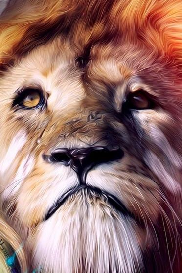 शेर 3 डी