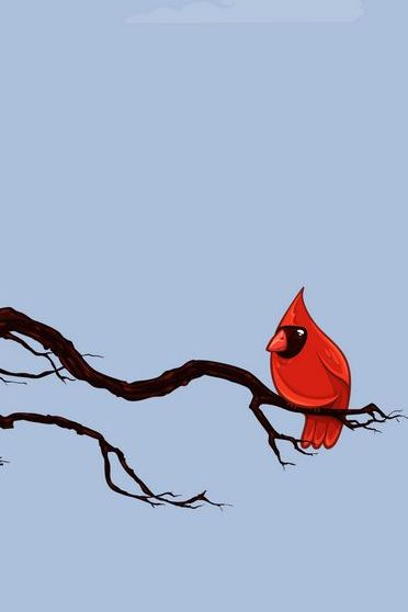 Pássaro nervoso