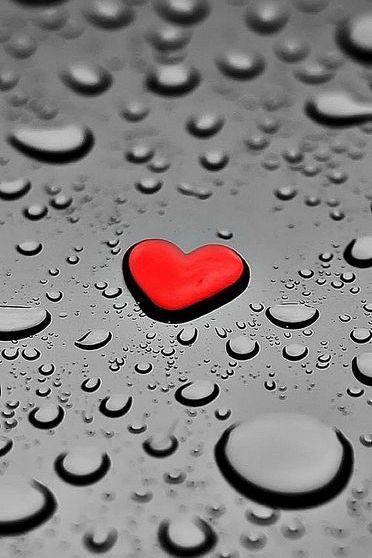 사랑의 물방울