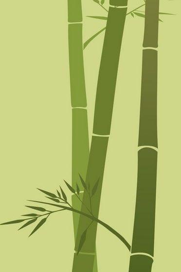 Bamboo Minimal
