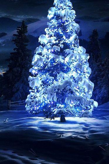 White Tree Light