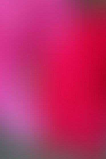 ピンクレッドブラック