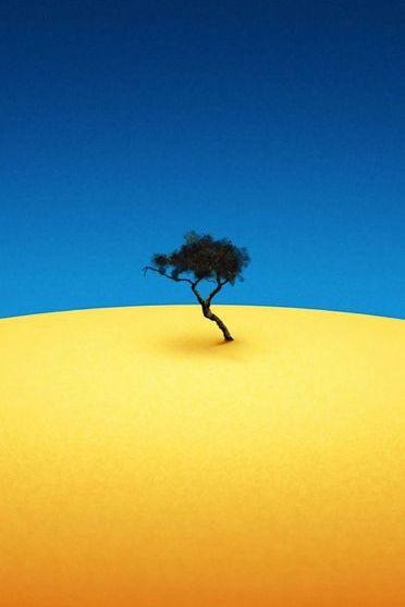 Tree Minimal