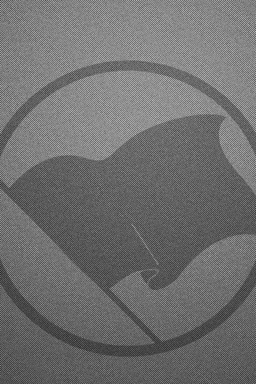 Flaga Anarchii