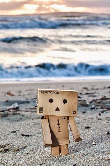 Danbo On Beach