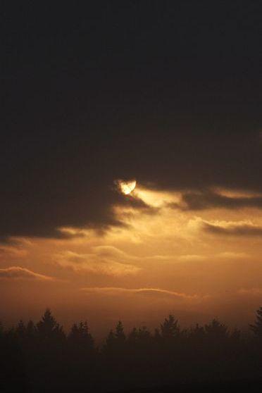 Shiny Moon