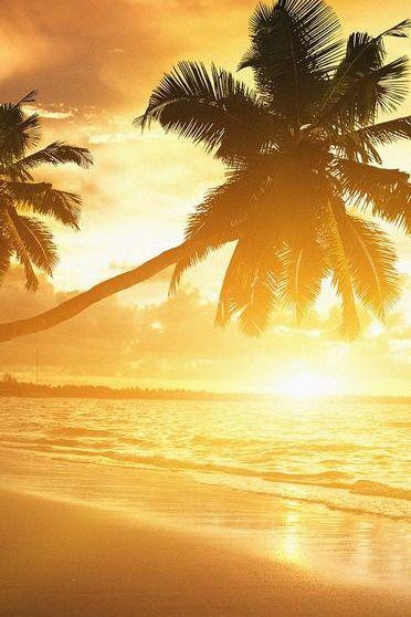 Carribean Coast