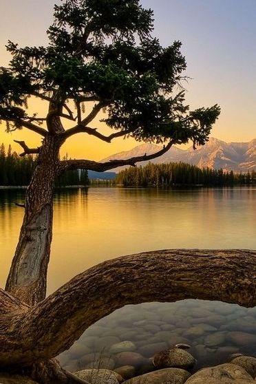 Beside Lake
