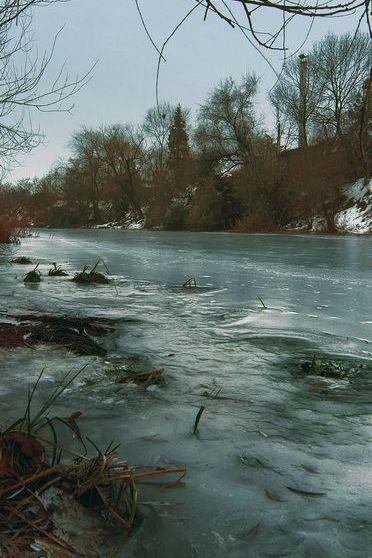 The River Scene