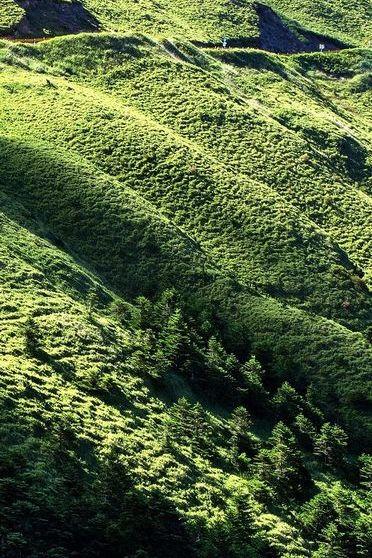Encosta verde