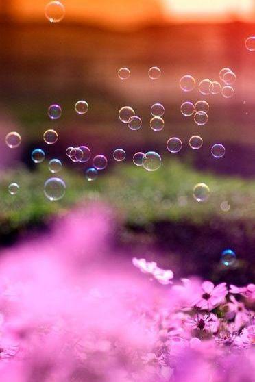 Bubble (9)