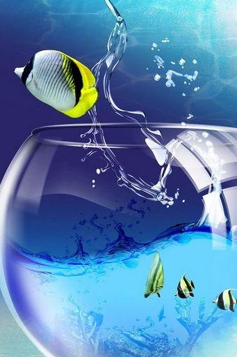 Fish Flying