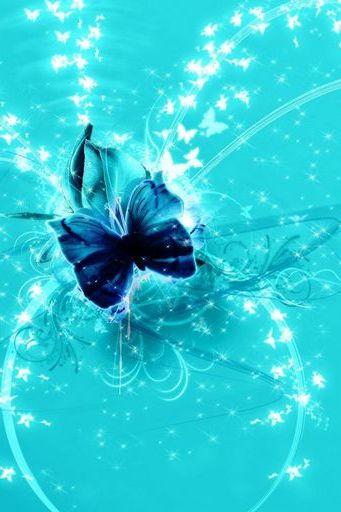 Butterfly Glows