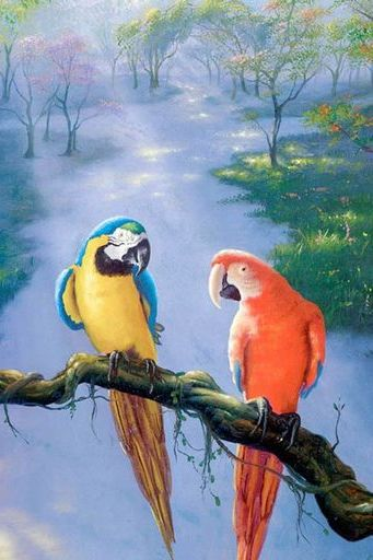 Beautiful Parrots Painting