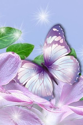Essence Of Lavender Butterflies