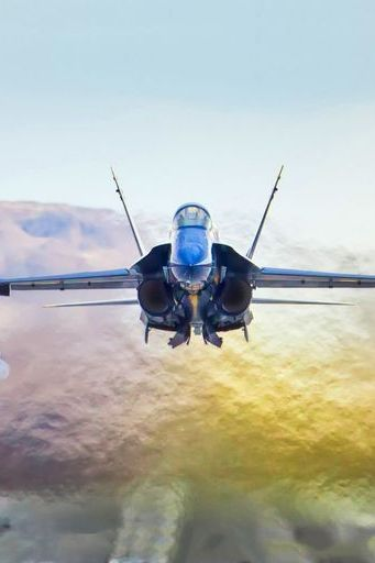 F18大黄蜂