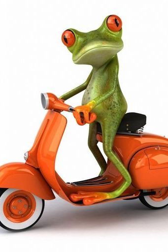 Frog Moped Sports Racing