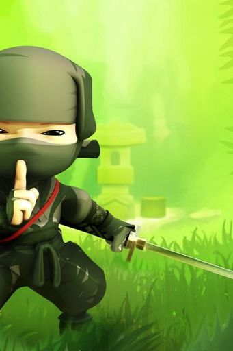 Mini Ninja Game