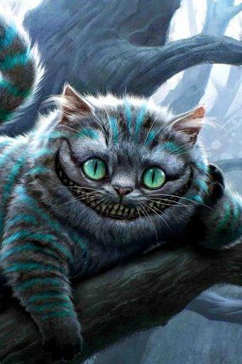 Lustiger Herr Cat