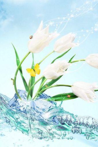 Водный тюльпан